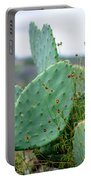 Texas Cactus Portable Battery Charger