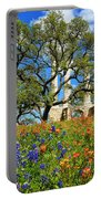 Springtime Ruins Portable Battery Charger