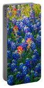 Texas Colors Portable Battery Charger