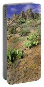 Texas Desert Portable Battery Charger