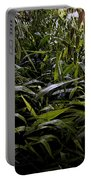 Texas Grasses Portable Battery Charger