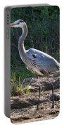 Texas Coastal Birds Portable Battery Charger