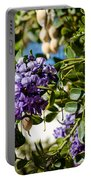 Texas Mountain Laurel Sophora Flowers And Mescal Beans Portable Battery Charger