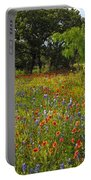Texas Wildflower Medley Portable Battery Charger