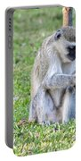 Texting Monkey Portable Battery Charger