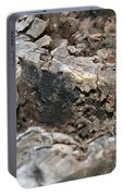 Textured Tree Stump Of Eucalyptus Tree  Portable Battery Charger