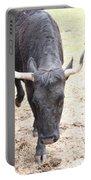 That Ain't No Bull Portable Battery Charger