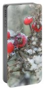 That First Snowfall Portable Battery Charger