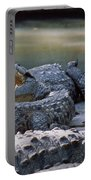 Ma-904-the American Crocodile  Portable Battery Charger