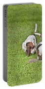 The Bassets Portable Battery Charger
