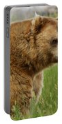 The Bear Dry Brushed Portable Battery Charger