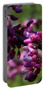 The Beautiful Redbud Tree Portable Battery Charger