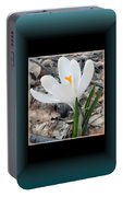 The Beautiful Single Crocus Portable Battery Charger