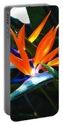 The Beauty Of A Bird Of Paradise Portable Battery Charger