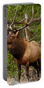 The Bull Elk Portable Battery Charger