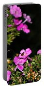 The Butterfly Garden At Night Portable Battery Charger