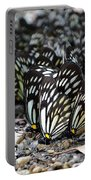 The Butterfly Gathering 2 Portable Battery Charger