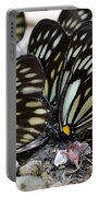 The Butterfly Gathering Portable Battery Charger