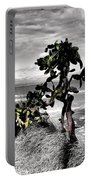 The Catus Tree Siesta Key Florida Portable Battery Charger