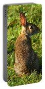 The Curious Rabbit Portable Battery Charger