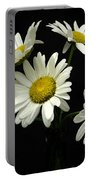 The Daisy Five  Portable Battery Charger
