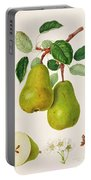 The D'auch Pear Portable Battery Charger by William Hooker