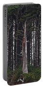 The Deep Dark Sharp Forest Portable Battery Charger