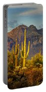 The Desert Golden Hour II  Portable Battery Charger
