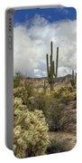 The Desert Southwest Portable Battery Charger
