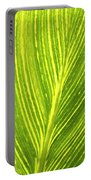 The Detail Of Plant Leaf, Salt Lake Portable Battery Charger