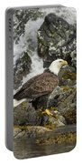 The Eagle Portable Battery Charger