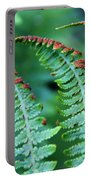 The Fern Portable Battery Charger