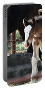 The Flying Colt With The Big White Feet Portable Battery Charger