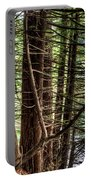 The Forest Combed By The Wind In The Lake Portable Battery Charger