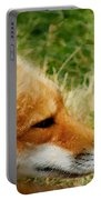 The Fox 7 Portable Battery Charger
