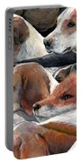 Fox Play Portable Battery Charger