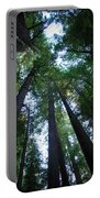 The Giant Redwoods I Portable Battery Charger