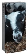 The Goat With The Gorgeous Eyes Portable Battery Charger