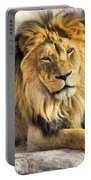 The Golden King 2 Portable Battery Charger