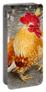 The Golden Rooster Portable Battery Charger