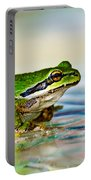 The Green Frog Portable Battery Charger by Robert Bales