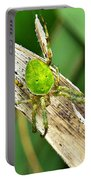 The Green Spider Portable Battery Charger