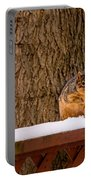 The Grey Squirrel George In Winter Portable Battery Charger
