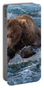 The Grizzly Plunge Portable Battery Charger