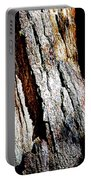 The Heart Of Barkness In Mariposa Grove In Yosemite National Park-california  Portable Battery Charger
