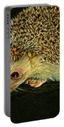 The Hedgehog Digital Art Portable Battery Charger