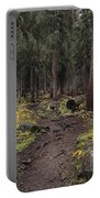 The High Forest Portable Battery Charger by Eric Glaser