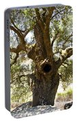 The Hole Tree Santa Margarita Lake Portable Battery Charger