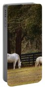 The Horse And The Pony - Standard Size Portable Battery Charger