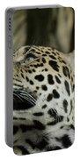 The Jaguar's Gaze Portable Battery Charger